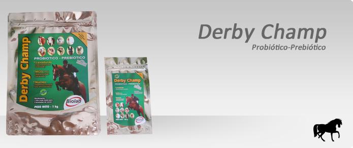 Derby Champ